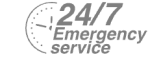 24/7 Emergency Service Pest Control in Mortlake, SW14. Call Now! 020 8166 9746